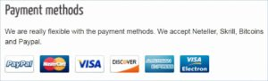 Screenshot from an example online pirate site showing the supported payment methods